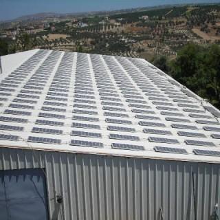 250 solar panels